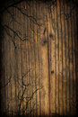 Spooky wooden background Stock Images