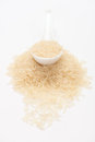 Spoon of basmati rice Royalty Free Stock Photo