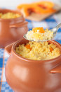 Spoon of millet porridge with sliced pumpkin pot and Royalty Free Stock Photography