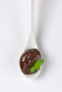 Spoon of plum jam Royalty Free Stock Photo
