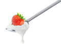 Spoon of strawberry yogurt Royalty Free Stock Photo