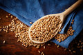 Spoon with whole wheat grains Royalty Free Stock Photo