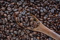 Spoonful of coffee beans on coffee bean heap soft focus Stock Photography