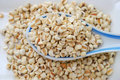 Spoonful of dried barley seeds Royalty Free Stock Image