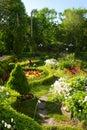 Spoor tussen bloemen Royalty-vrije Stock Foto's