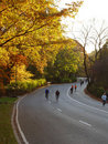 Sport activity in Central Park, New York, NY. Fall evening Stock Photos