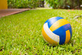 Sport ball over the grass Royalty Free Stock Photo