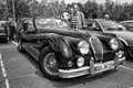 Sport car jaguar xk roadster black and white berlin may th oldtimer tage berlin brandenburg may berlin germany Stock Photos