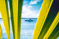 Sport fishing boat coconut leaves anchored in perfect clear water seen between Royalty Free Stock Photo