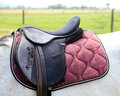 Sport saddle with stirrups on a back of a horse Royalty Free Stock Photo