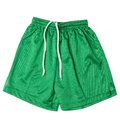 Sport shorts on a white background Royalty Free Stock Image