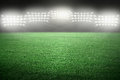 Sport stadium in spotlight with green grass field Royalty Free Stock Photo