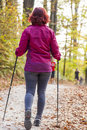 Sportive cute woman nordic walking autumn cross country mid aged female hiker under the blue sky of the morning sun in the forest Stock Image
