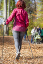 Sportive cute woman nordic walking autumn cross country mid aged female hiker under the blue sky of the morning sun in the forest Stock Photos