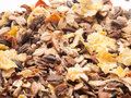 Sportive muesli background with black oats. for horse. macro