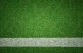 Sports Background On Grass Tex...
