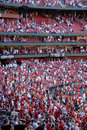 Sports crowd  Stock Photo