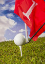 Sports equipment golf summer colorful concept with grass Stock Photos