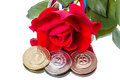 Sports Medal and the Rose Royalty Free Stock Photography