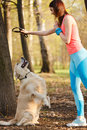 Sports woman training golden retriever Royalty Free Stock Photo