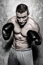 Sporty man young in boxing gloves posing Royalty Free Stock Photography