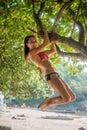 Sporty slim young woman wearing bikini climbing tree on a sandy beach at resort. Smiling  caucasian brunette girl hangin Royalty Free Stock Photo