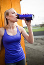 Sporty woman drinking Royalty Free Stock Photography