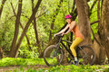 Sporty Woman Riding The Bike I...