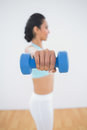 Sporty young woman lifting blue dumbbells standing in fitness hall Stock Photo