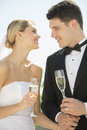 Sposa e sposo with champagne flutes holding hands outdoors Fotografia Stock