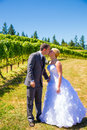 Sposa e sposo romantic kiss Fotografie Stock