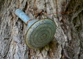 Spout of an old metal watering can Royalty Free Stock Photo