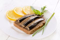 Sprats sandwich on white plate Royalty Free Stock Images