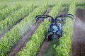 Spraying of grapevines in vineyard in france Stock Photos