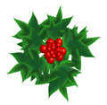 Sprig of European holly Stock Photos