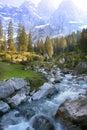 Spring alpine stream Royalty Free Stock Photo