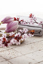 Spring atmosphere for body cleansing at home spa Royalty Free Stock Photo
