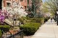 Spring in Back Bay Stock Image