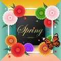Spring background among beautiful colorful dahlia flower, Royalty Free Stock Photo