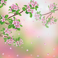 Spring background with blossoming apple tree branches and flying petals Royalty Free Stock Photo