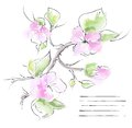 Spring background with branch of sakura vector illustration Stock Photography
