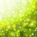 Spring background with chamomiles Stock Photo