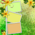 Spring background with frames Stock Photos