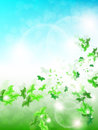 Spring Background with leaf Butterflies Royalty Free Stock Image