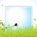 Spring background panel with flowers grasses and butterflies Stock Photos