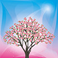 Spring background with sakura blossom japanese c cherry tree vector illustration Stock Photo
