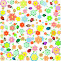 Spring background with small flowers and ladybugs Stock Image