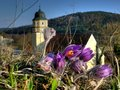 Spring in Bavaria Royalty Free Stock Image