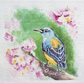 Spring bird at blossom branch watercolor Royalty Free Stock Photos
