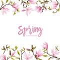 Spring Blossom Background - Magnolia Flowers